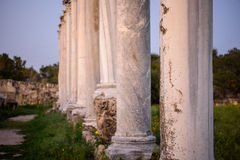 Pillars in ancient city of Salamis, Cyprus. Royalty Free Stock Photo