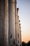 Pillars in ancient city of Salamis, Cyprus. Royalty Free Stock Image