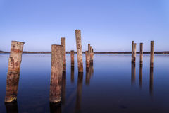 Pillars for a berth in the Baltic Sea stock photography