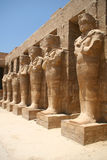 Pillars in Egypt Royalty Free Stock Photography