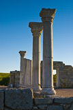 Pillars of Greeks Royalty Free Stock Photography