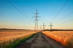 Pillars of line power electricity in wheat fields on blue sky. Pillars of line power electricity among the wheat fields in the blue sky Royalty Free Stock Image