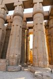 Pillars at Luxor Temple - Egypt. Day view of Luxor Temple Luxor, Egypt royalty free stock photography