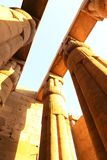 Pillars at Luxor Temple - Egypt. Day view of Luxor Temple Luxor, Egypt royalty free stock photo