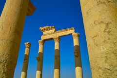 Pillars of Palmyra Stock Photo