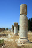 Pillars in Pamukkale Stock Photography