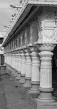 Marriage hall Pillars in Perspective Stock Images