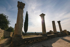 Pillars of the roman ruins, Volubilis, Morocco. Some pillars of the roman ruins of Volubilis on a beautiful day with sunshine, blue sky and only few clouds stock photos