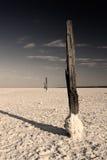 Pillars at salty desert Stock Images