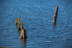 pillars in the sea Stock Photography