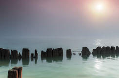 Pillars in water in a foggy morning. Sample stock photography