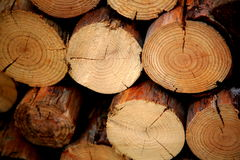 Pilled logs. Logs all stacked and waiting for you to place them into the burner stock image
