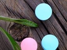 Pillen und grüne Blattalternativtherapie Stockfoto