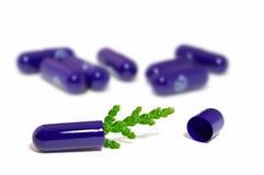 Pillola con il germoglio Immagini Stock Libere da Diritti