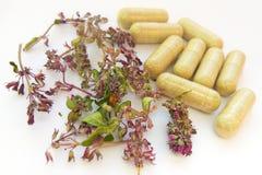Pillole della medicina di erbe con le erbe naturali asciutte su fondo bianco Concetto di medicina di erbe e degli integratori ali fotografia stock libera da diritti