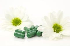 Pillole della natura Immagine Stock