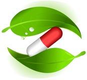 Pillole di erbe Immagine Stock Libera da Diritti