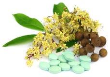 Pillole di erbe con hennè immagine stock