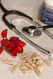 Pillole di erbe e medicina tradizionale Immagine Stock