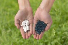 Pillole e bacche nelle mani fotografia stock