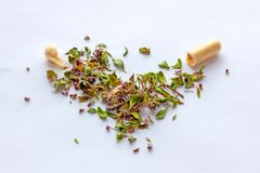Pillole e capsule nutrizionali di supplementi sul fondo secco delle erbe Medicina di erbe, naturopatia ed omeopatia alternative fotografia stock libera da diritti