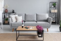 Pillows on the comfortable grey couch stock images