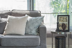 Pillows on modern grey sofa in living room Royalty Free Stock Image
