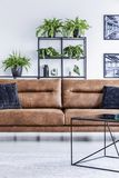 Pillows and posters in modern living room interior with table in front of leather couch. Real photo. Concept royalty free stock photos