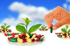 Pills And Plants. Stock Photo