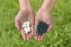 Pills and berries in the hands stock photography