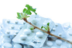 Pills in blisters and green branches Royalty Free Stock Images