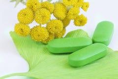 Pills and Ginkgo Biloba Stock Images