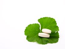 Pills and leaf. Pills of the green leaf. White background royalty free stock photo
