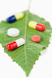 Pills on a leaf Stock Photography
