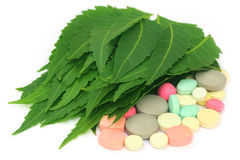Pills made from medicinal neem leaves Stock Photos