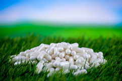 Pills on a meadow. White pills on a green meadow Royalty Free Stock Image