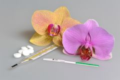 Pills, mercury thermometer, ovulation test, two orchid flowers on gray Royalty Free Stock Images