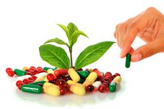 Pills and plant. Stock Images