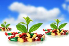 Pills and plants. Royalty Free Stock Photos