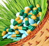 Pills, tablets and wheat grass in the basket Stock Image