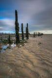 Pilmore Groynes处于低潮中2 免版税图库摄影