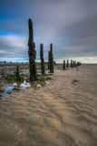 Pilmore Groynes at Low Tide 2 Royalty Free Stock Photography