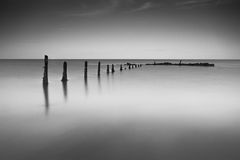 Pilmore Groynes 8 Stock Photos