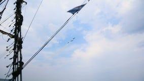 Piloci militarne siły powietrzne pokazuje uroczystego lotniczego występ nad wodą, sekwencja zbiory wideo