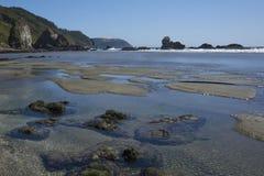 Pilolcura海滩在南智利 免版税库存照片