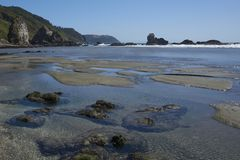 Pilolcura beach in Southern Chile Royalty Free Stock Photos