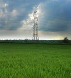 Pilon électrique dans un domaine vert Photographie stock