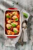 Pilon de poulet cuit au four avec la sauce tomate et la salade verte Photographie stock libre de droits