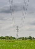 Pilone ad alta tensione sopra la terra della risaia Fotografia Stock Libera da Diritti