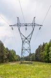 Pilone della trasmissione di elettricità in una foresta immagini stock libere da diritti